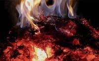 """烧得比澳大利亚山林大火还旺!2020海外销售税""""一把火""""烧着了卖家后院"""